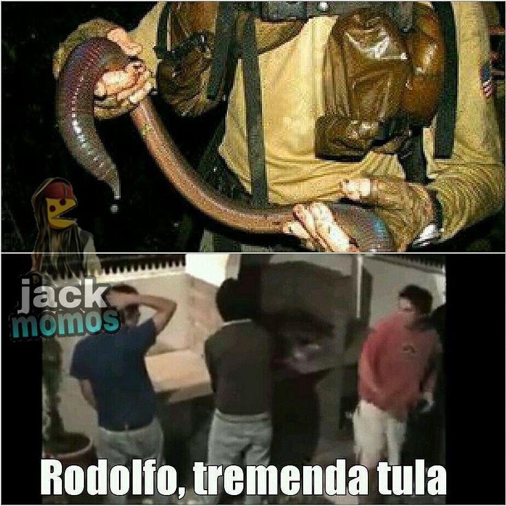 Sigueme Tengo Mas Momos ★@jackmomos ►Todo Aqui Es Solo Humor ▁ ▁ ▁ ▁ ▁ ▁ ▁ ▁ ▁ ▁ ▁  Xd  #memes #momo #momazo #humor #momos #colombia #bogota #memes #risas #chile #peru #ecuador #trend #panama #dbz #sdlg #OriginalCrew #sdle #momoscorp #soacha #medellin #cali http://quotags.net/ipost/1638531282161260889/?code=Ba9O4USlllZ