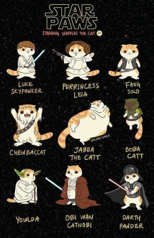 Vintage Star Wars Star Paws starring Waffles the cat