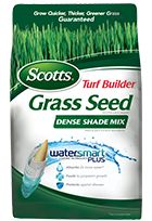 Scotts Turf Builder Grass Seed Dense Shade Mix - Grass Seed - Scotts