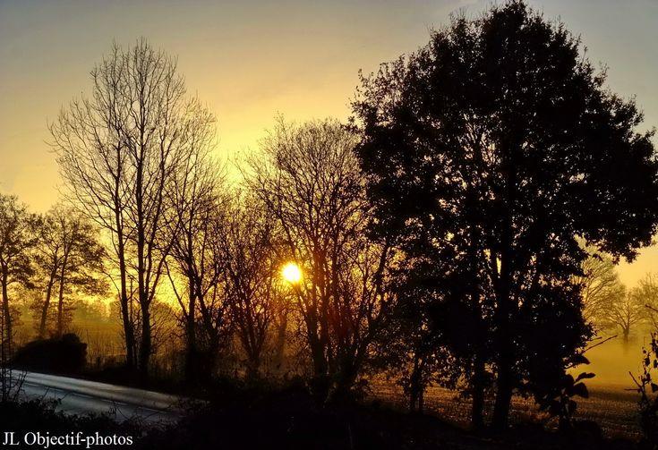 Domfront, Orne, Basse-Normandie, sur la D976 au levé du soleil en hiver