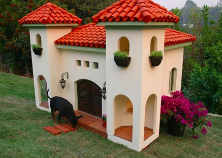 A dog's home is his castle, right?