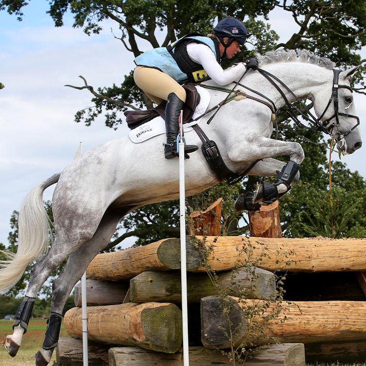 Snow Wind SN • Kitty King Eventing