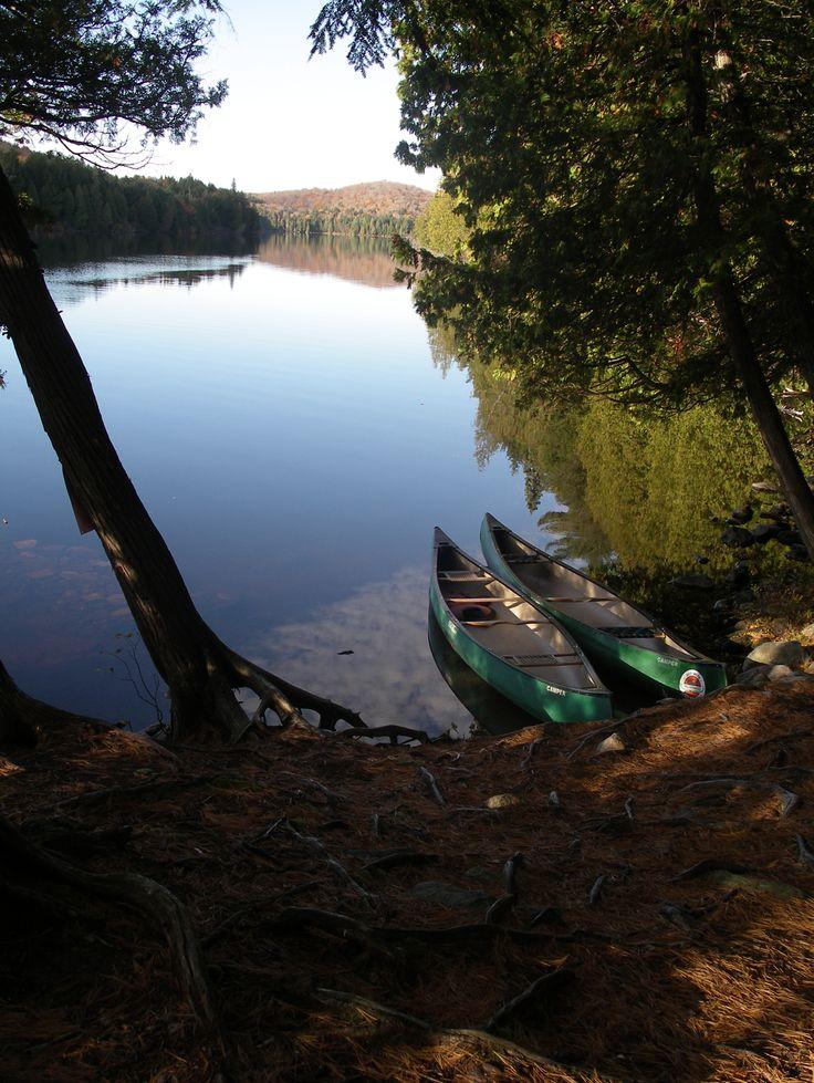 Canoe / hiking in Algonquin Park