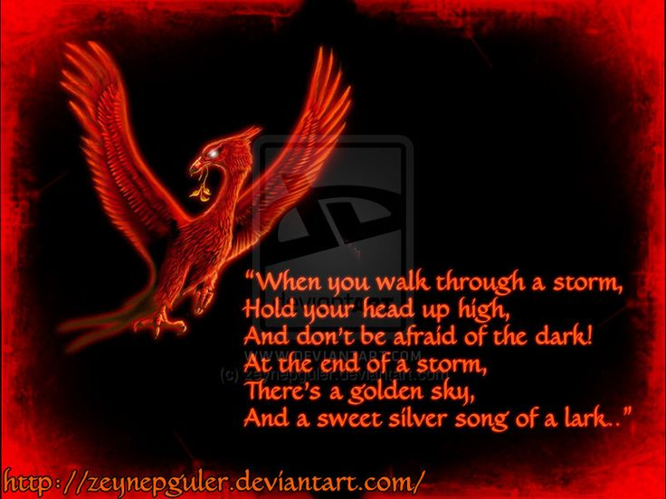 Don't Be Afraid Of The Dark! by zeynepguler.deviantart.com
