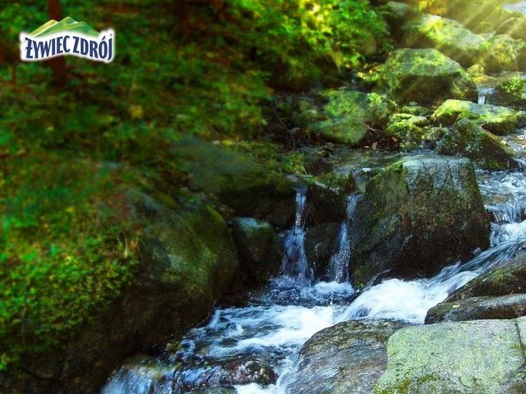 Potok w Beskidach