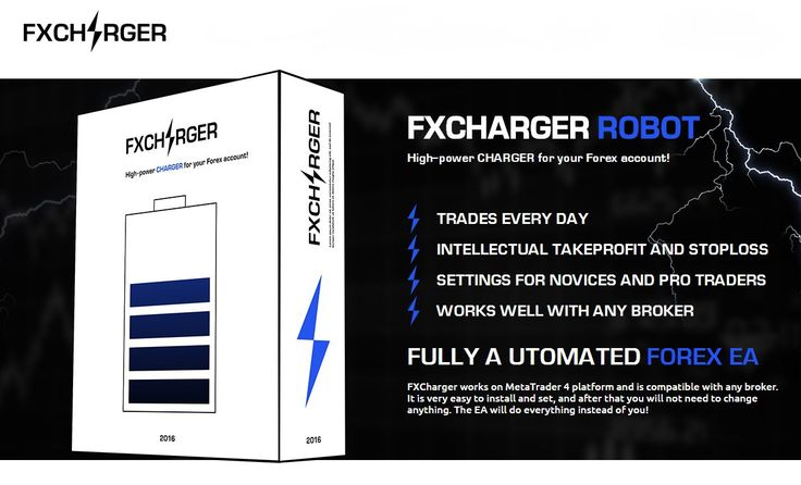 Forex warrior review