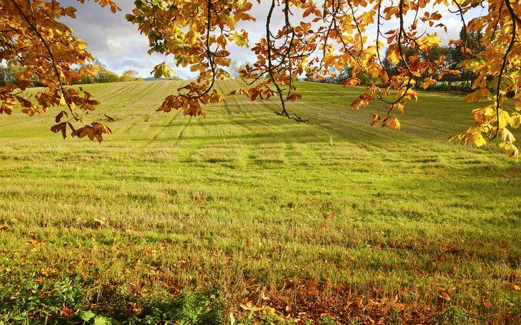 Beautiful Autumn Wallpapers 84