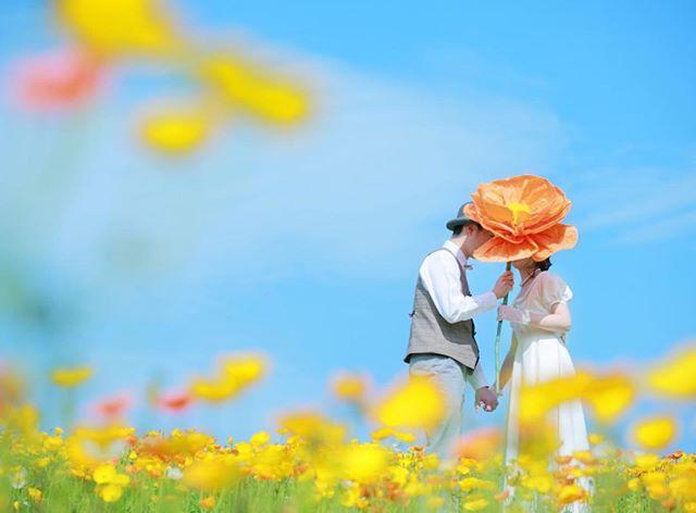 2016.04ウェディングロケーションフォト.大きなポピーのお花を持って