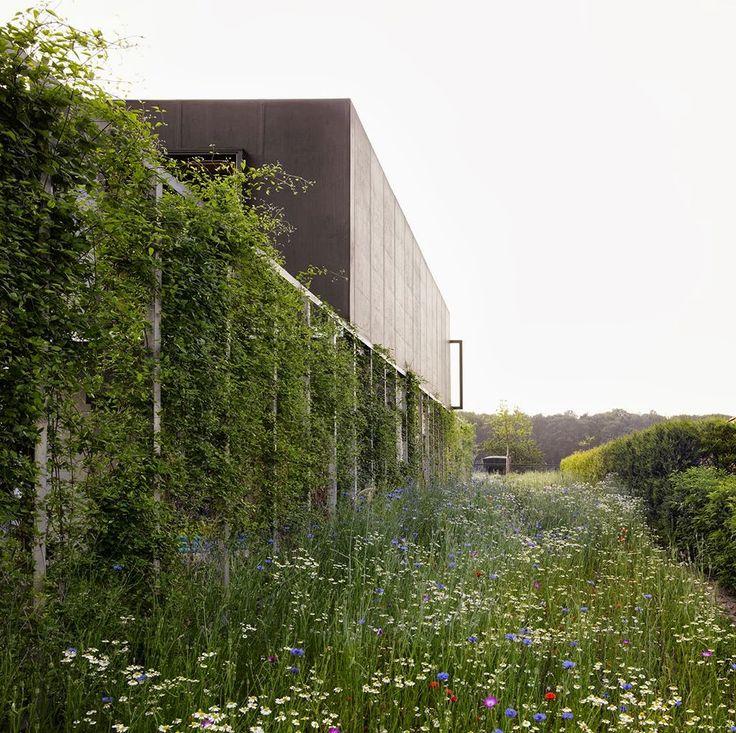 artesanato osso jardim:Mais de 1000 ideias sobre Jardins No Telhado no Pinterest