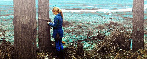 """And Hermione tied her scarf around the tree in hopes Ron would come back and see in order to be able to find them""."