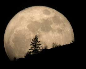 """The """"biggest"""" full moon of 2012 will happen on May 5, when the moon will be closer to Earth than any other time this year.Supermoon Alert, Super Moon, Fullmoon, 5Th 2012, 2011 Supermoon, Full Moon, Biggest Full, Saturday Night, The Moon"""