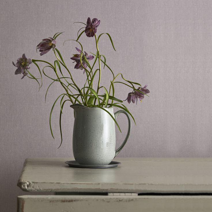 Lavender Blush #5571