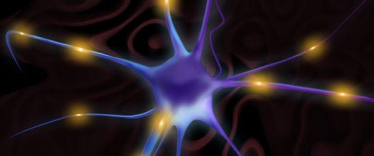 Illuminer le cerveau pour vaincre la dépression | Santé Magazine