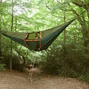 The Hammock Tent, less bugs and creatures?
