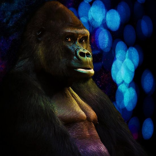 Gorilla stare with abstract bokeh background in blue by Tracey Lee Art Designs - digital painting