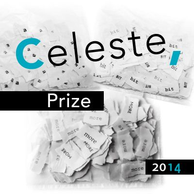 Celeste Prize is an international contemporary art prize http://www.celesteprize.com/celesteprize2014/