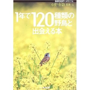 Japanese 120 birds visual book