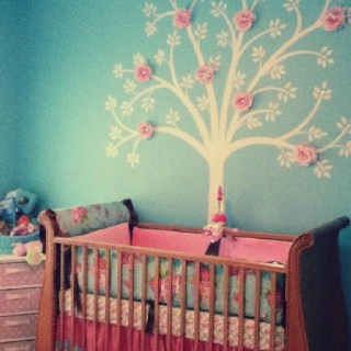 Kaydence's room colors