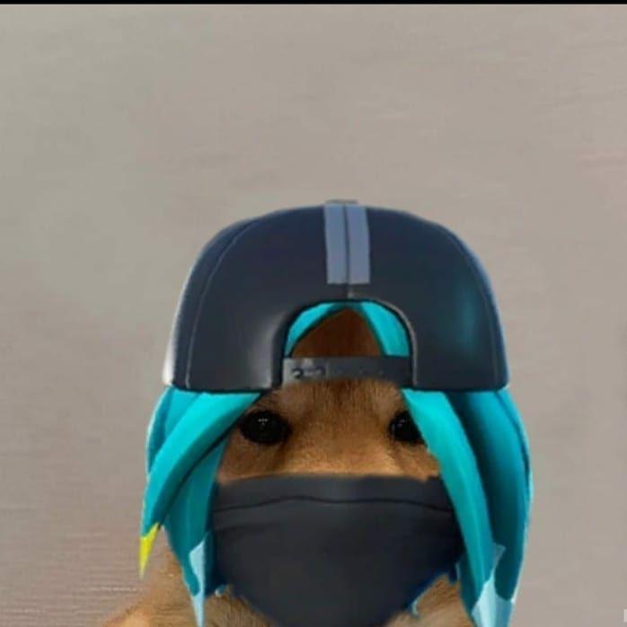 @fortnite #dog #dogwifhatgang #dogwifhat #dogwifhatrc # ...