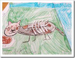 Animal classification-vertebrates vs. invertebrates. Cute idea from Second Grade Shenanigans