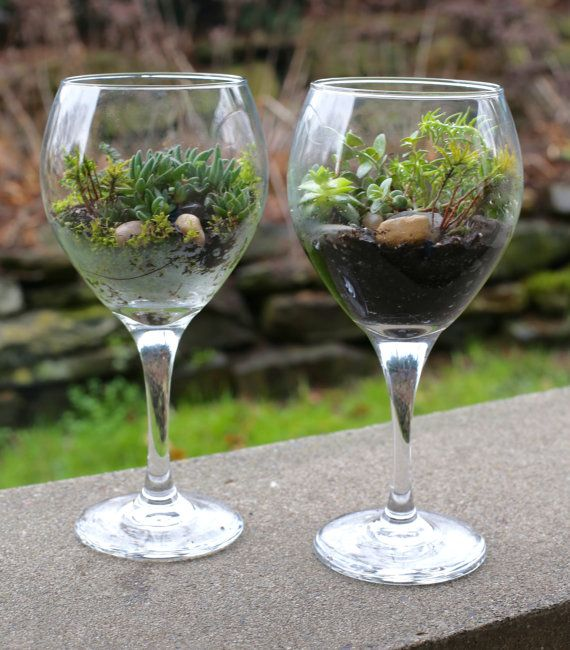 Hey, I found this really awesome Etsy listing at https://www.etsy.com/listing/263392358/wine-glass-worlds-beautiful-succulent