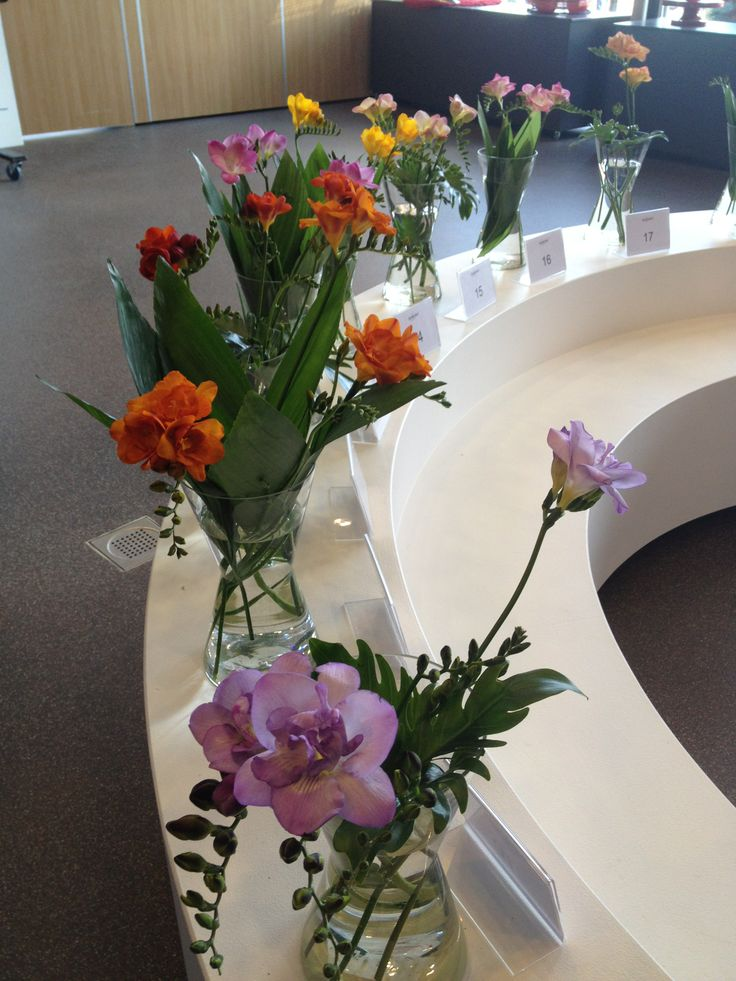 Visitors were invited to vote for the most beautiful freesia variety of the show,