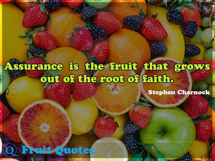 Assurance is the fruit that grows out of the root of faith. Fruit Quotes 25