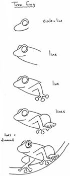 draw a tree frog | How to draw a tree frog