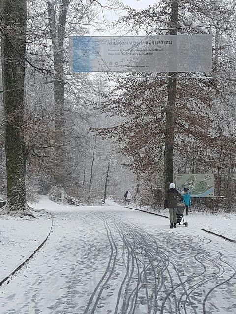 5hugs: gewesen: Dählhölzli Tierpark, Bern