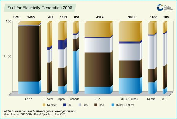 Fuel for Electricity Generation