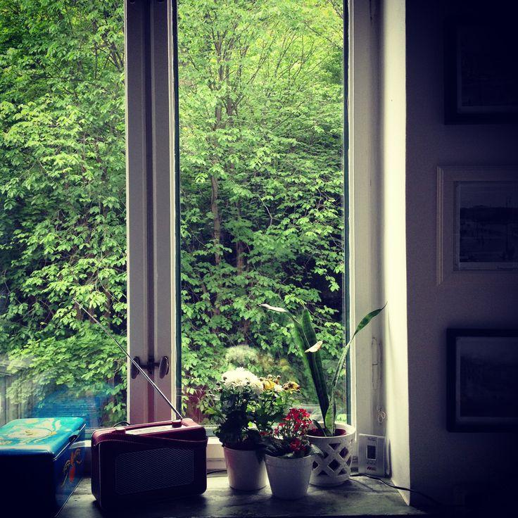 Mitt köksfönster