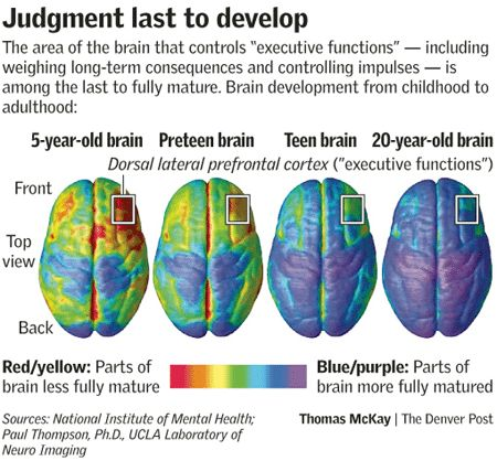 The stages of intellectual development in children and teenagers in united states research