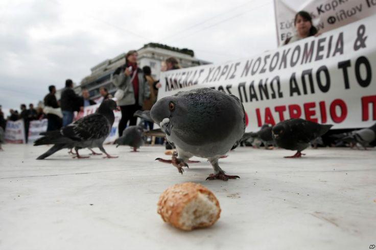 Seekor burung merpati mengincar potongan roti di luar Parlemen Yunani, ketika para demonstran anti-penghematan mengangkat poster di belakangnya, Athena, Yunani. (6 Februari 2014)
