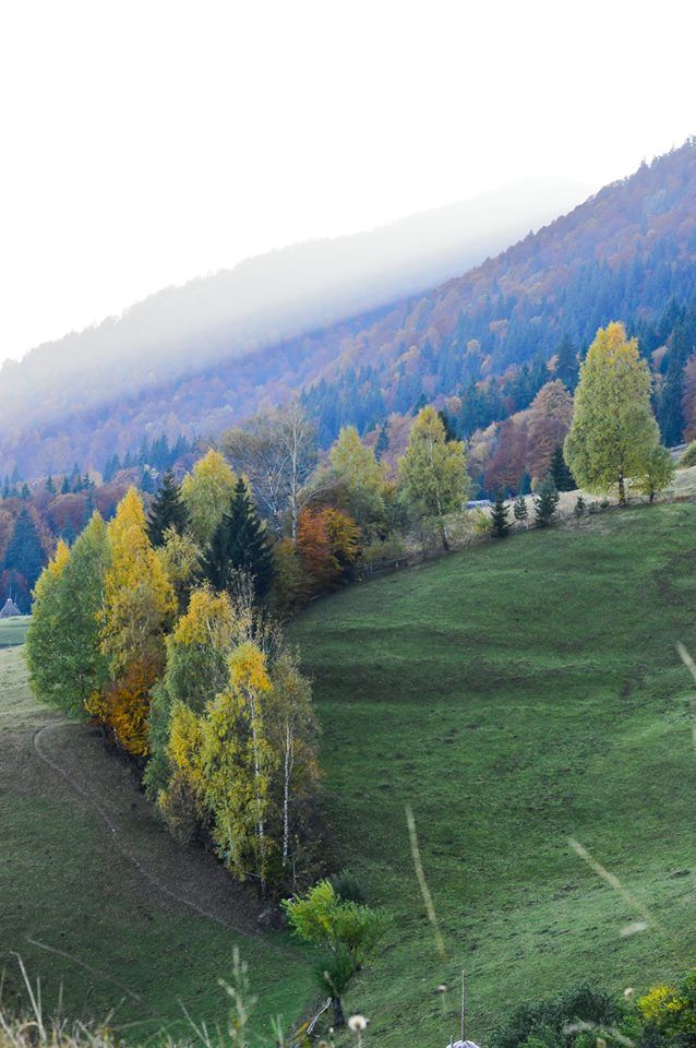 Pestera Village, Romania. October. Autumn. Perfect view. Photo Credit : Ilie Sorin