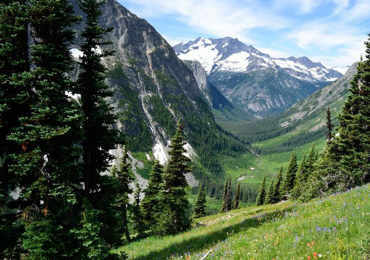 A u-shaped green valley of grass, flowers, evergreen trees and snow-capped peaks