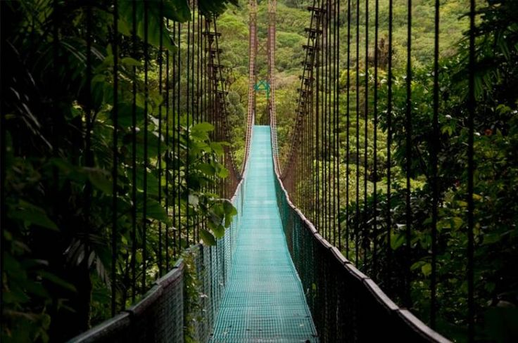 Pura Vida in COSTA RICA - un paradis tropical cu parcuri nationale spectaculoase si plaje de vis! http://bit.ly/2gPw36M #paradis #tropical #plajedevis
