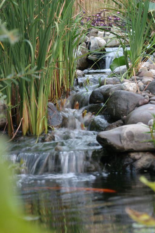 154 best PONDS & WATERFALLS images on Pinterest   Backyard ideas ...
