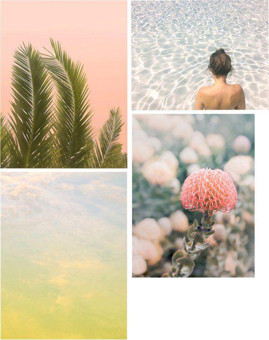 Jane Wilder Photography - decor8