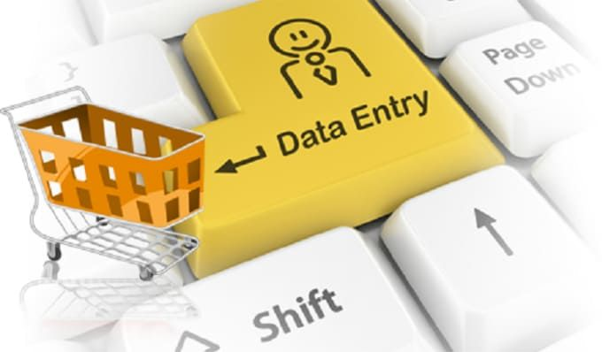 do data entry related tasks within limited time