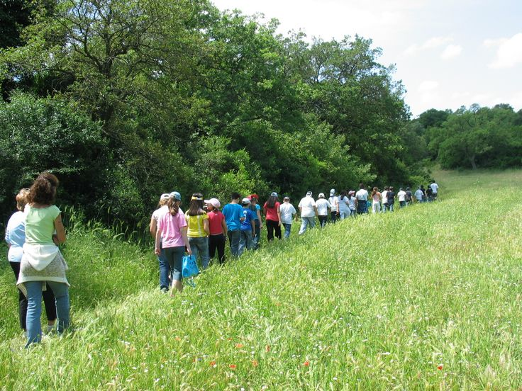 #EducationalTourism-Nature walk in the woods