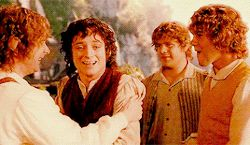 Th 4 hobbits <3 forever in my heart.. GIF