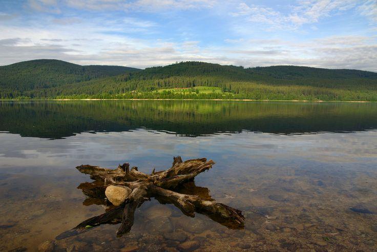 Der Schluchsee ist der größte See im Schwarzwald und seit Jahren einer der …   – Southwest Germany