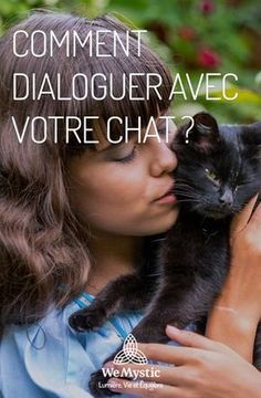 Comment dialoguer avec votre chat ?