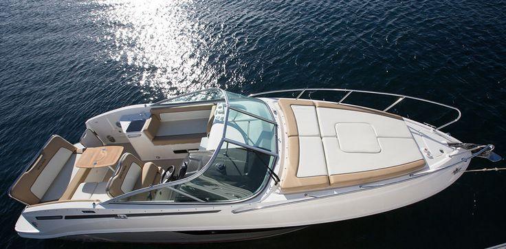 842 Cuddy - Bayliner Boats