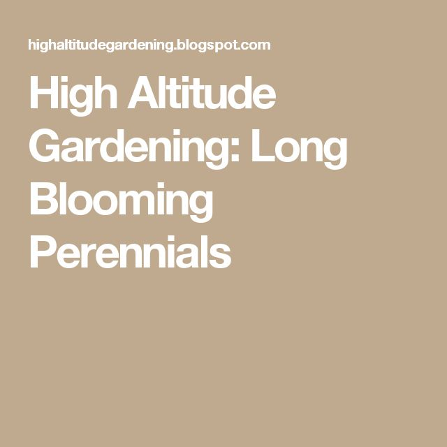 High Altitude Gardening: Long Blooming Perennials