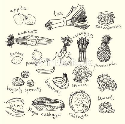 Vector Art: Healthy food. Sketch style