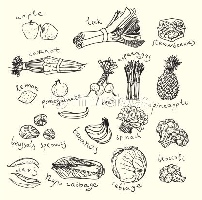 25 Best Ideas About Food Sketch On Pinterest Drawing Cookbook