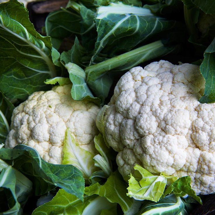 APRIL 2016 – April is a bit of a bonanza for veggies, and with the cooler weather comes an abundance of beautiful Organic Brassicas. One of the most popular is cauliflower – Watch this space for our favourite cauliflower recipes. What's your favourite?