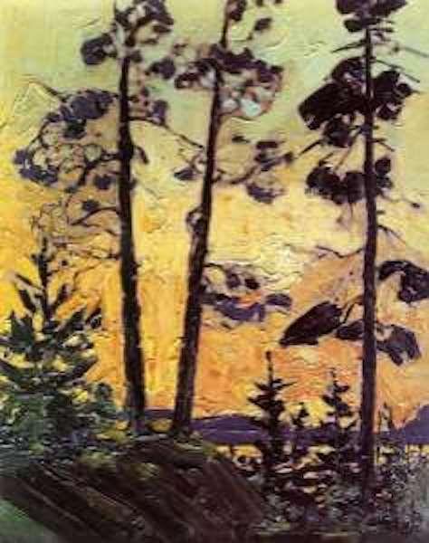 Tom THomson Pines at Sunset