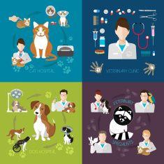 수의학 아이콘크기 평편 설정합니다. 수의사 클리닉, 애완동물 및 담담의